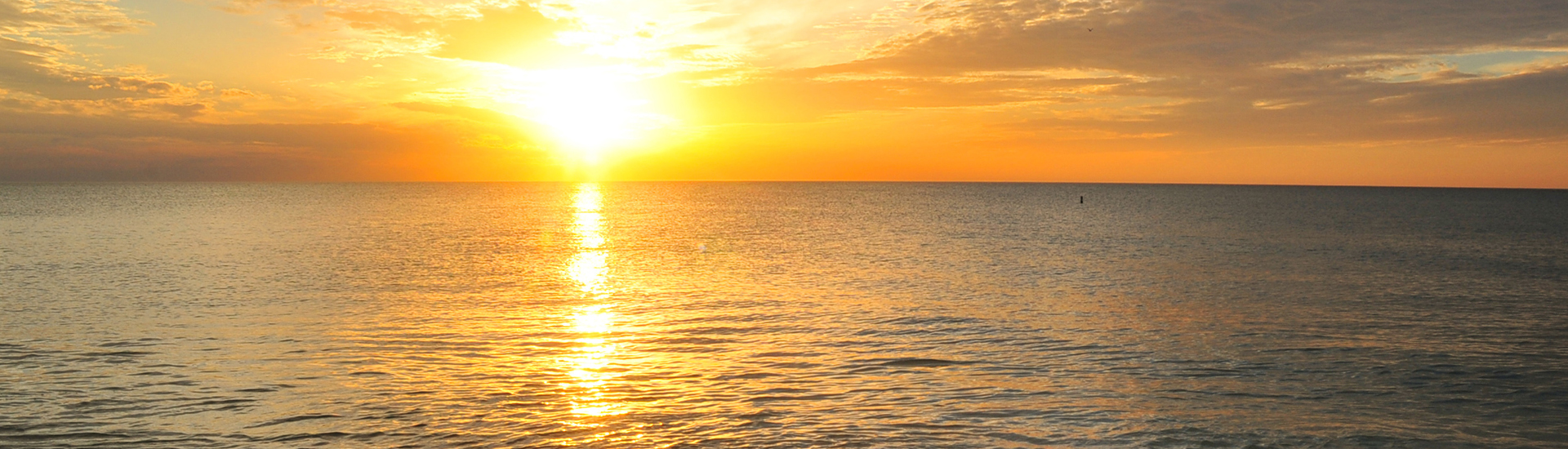 SUNSET 1920×550 WEB 300dpi